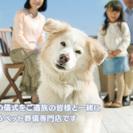 ペット火葬は大阪の メモリアル想 【安心ペット火葬】