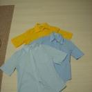 カラーシャツ3セット