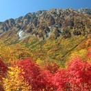 30歳以下独身男女限定!箱根紅葉日帰りハイキングと温泉ツアー