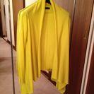 黄色でもからし色でもない絶妙な色合いです😊