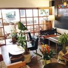 Livingoodキッチン付きレンタルスペース「レンタルカフェ」...