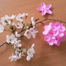 おりがみ de 桜まつり