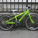 子供用自転車 ルイガノLGS-J22