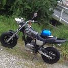エイプエンジン80