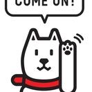 Softbankの店頭販売員募集!