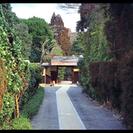 【ご当地講座】~桜鶴苑(東山・南禅寺エリア)でとっておきの春の一日...