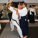 日子流体術/体術・小太刀・護身術からなる武術 − 東京都