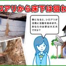 ※千葉県全域可  【個人向けシロアリ調査無料、予防施工から駆除工...