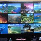 ハワイの美しい2015年度カレンダー