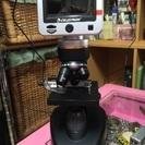 ほぼ新品♡セレストロンLED電子顕微鏡4431♡