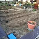 🌱貸し農園🌱
