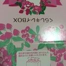 キティちゃん 暮らしキレイBOX  ダスキン 洗剤と可愛いスポンジのセット − 徳島県