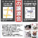 5月10日  猫の譲渡会 名古屋市西区 ふれあい館 みなと猫の会主催