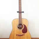 zenn アコースティックギター