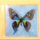 ポルノグラフィティ アゲハ蝶 CD
