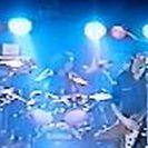 2018年9月 トリオ編成ロックンロールバンド、ベース募集