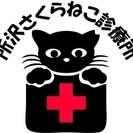 飼い主のいない猫の不妊•去勢手術に特化した診療所