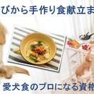 愛犬食のプロになる資格「ドッグレシピプランナー★★」ご自宅で受講...
