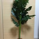 観葉植物(造花)