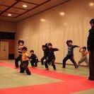 【子供クラス・親子参加も可】国分寺市・小平市で古伝少林拳【少年カンフー】 - 小平市