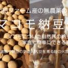 【無農薬大豆&マコモで作る手前マコモ納豆作りWS】