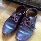 【激安】Trippenの革靴 37