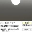 最終値下‼️半額 ODELIC ダクトレール用照明