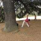 森林セルフケア・エンジョイプログラム 新宿御苑で森ヨガの集い