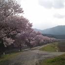 ◆ 古民家で宝探しツアー☆in Nagura ◆