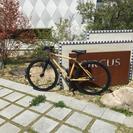 竹製自転車バンブーバイク