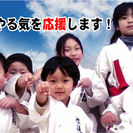啓道館グローブ空手キックボクシング