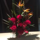 お花やさん♫ 花や 花彩