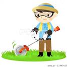 雑草の草刈り、木の伐採やります!