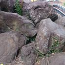 無料庭石 つくば石含む積置石