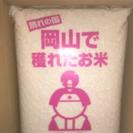 お米 10kg×2
