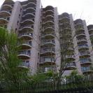 パノラマ富士が目の前に広がるリゾートマンション賃貸 (家具付き)値...