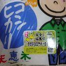 【取引中】コシヒカリの米、二袋 無料です。