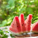 8月11日(木・祝)讃友会!夏のスイカ祭り!
