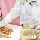 知多市内で製麺工場で具材の盛り付け作業員募集! - 軽作業