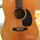 モーリスギター W-18