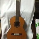 アコースティックギター お手頃価格❗️