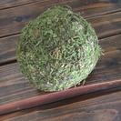 苔ボール1個50円