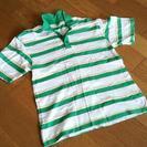 ボーダーポロシャツ 緑 L
