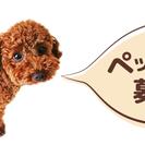 【東京】在宅ワーク|自宅で大好きなペットお預かりしませんか?