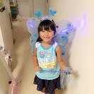 【新品】蝶々セット