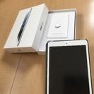 iPad mini wi-fiタイプ
