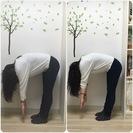 梅雨時期にも・耳つぼセラピスト・耳リフレ・カッサケアレッスン学びせんか?松江教室 - 松江市