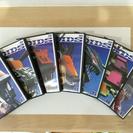 ゾイドDVD全14巻セット