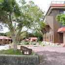 本州最南端 和歌山 潮岬 ペットと泊まれる宿 福籠 - ペット