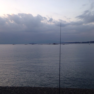 湘南、神奈川釣り仲間